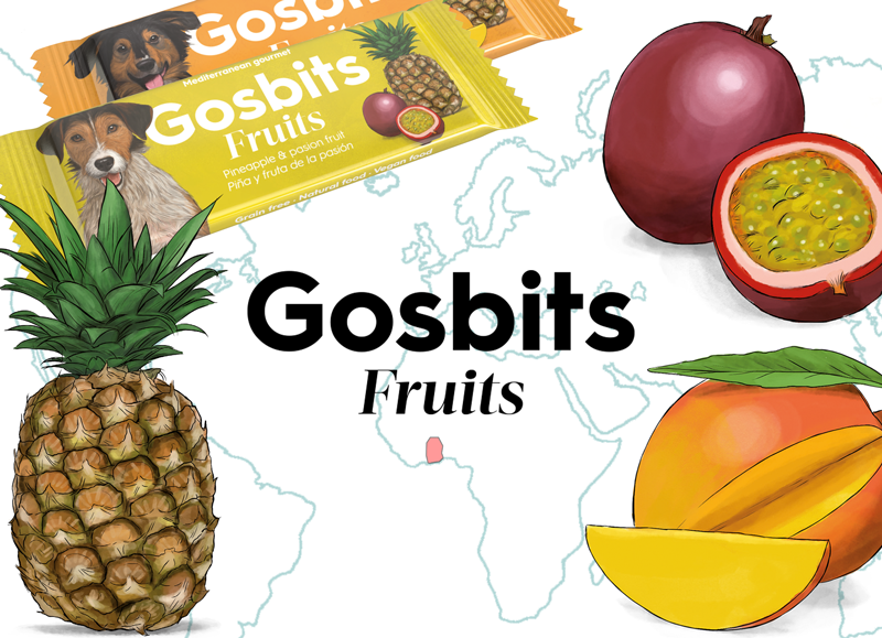 Gosbits Fruits, the ethical snack made in Africa